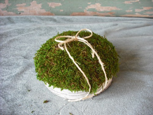 birch_bark_and_moss_flower_girl_basket_and_matching_ring_bearers_pillow_164e7798